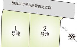 平津8期 HP